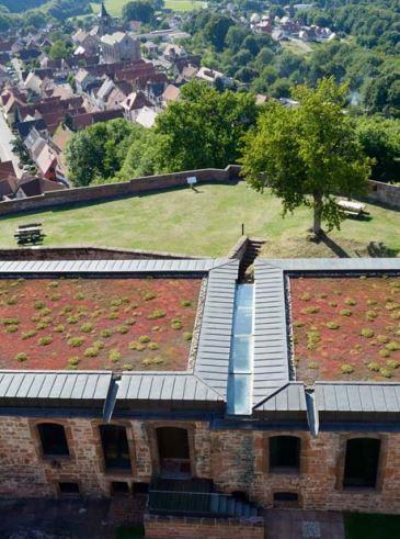Un toit végétalisé sur un patrimoine majeur
