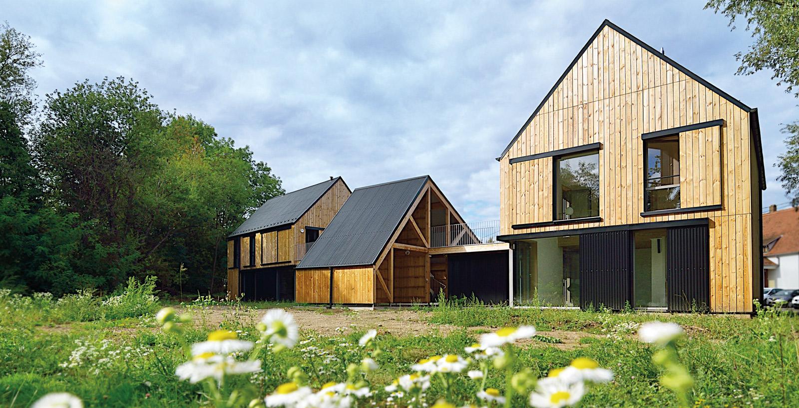 éco-construction bois loval, hêtre et pin sylvestre + paille